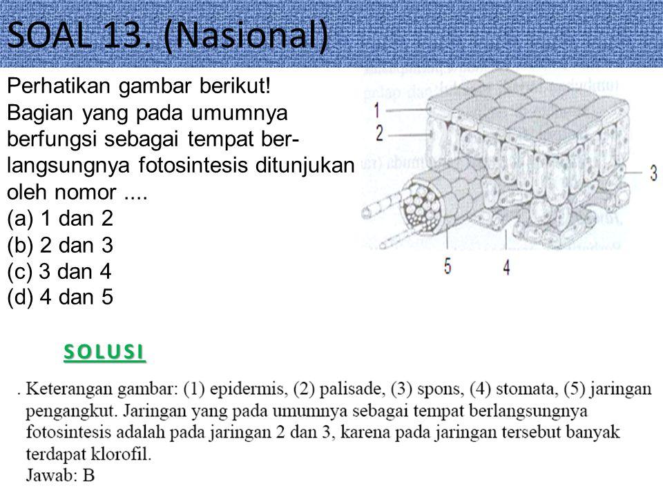 SOAL 13. (Nasional) Perhatikan gambar berikut!