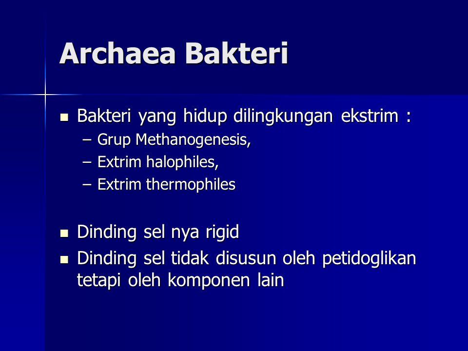 Archaea Bakteri Bakteri yang hidup dilingkungan ekstrim :