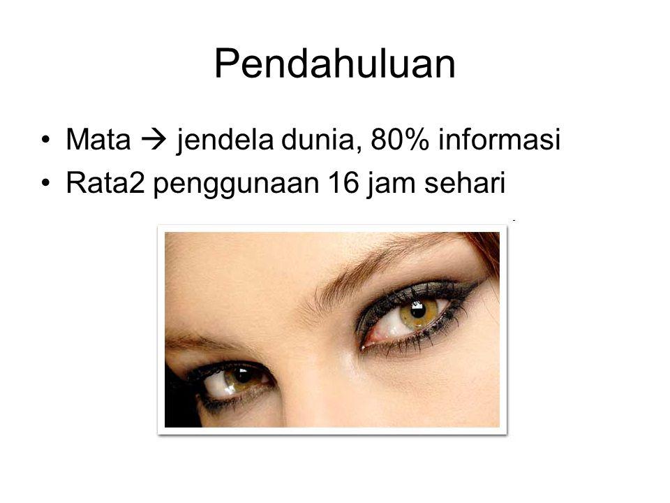 Pendahuluan Mata  jendela dunia, 80% informasi