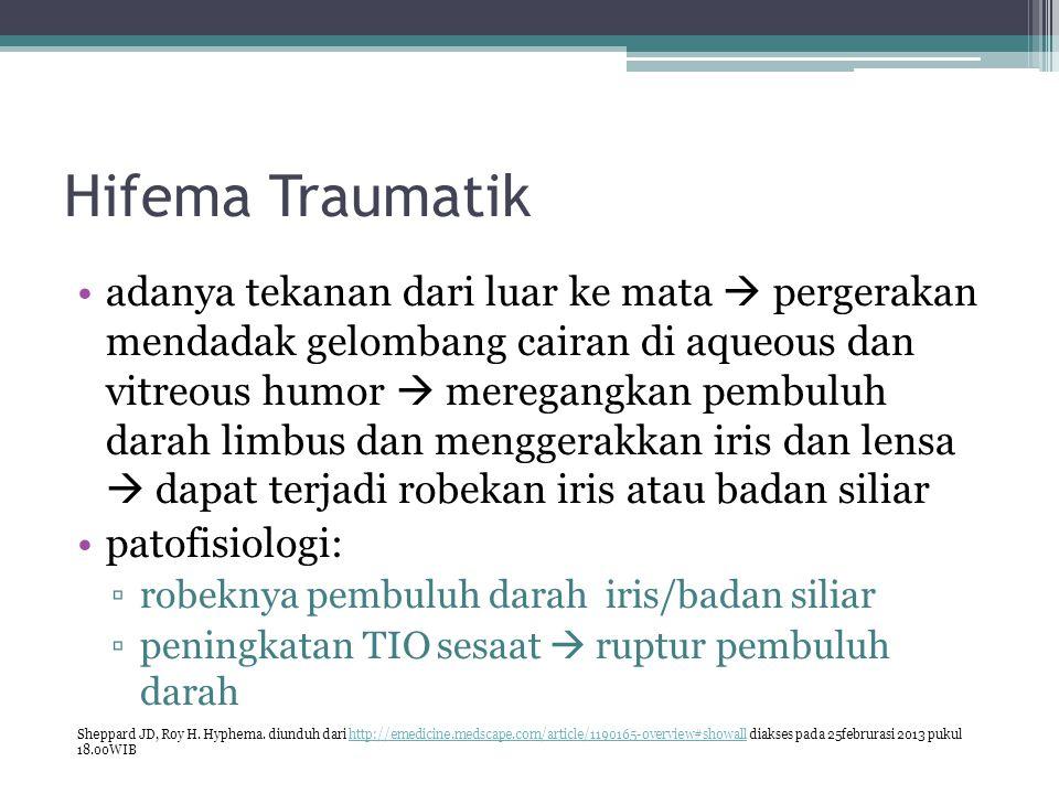 Hifema Traumatik