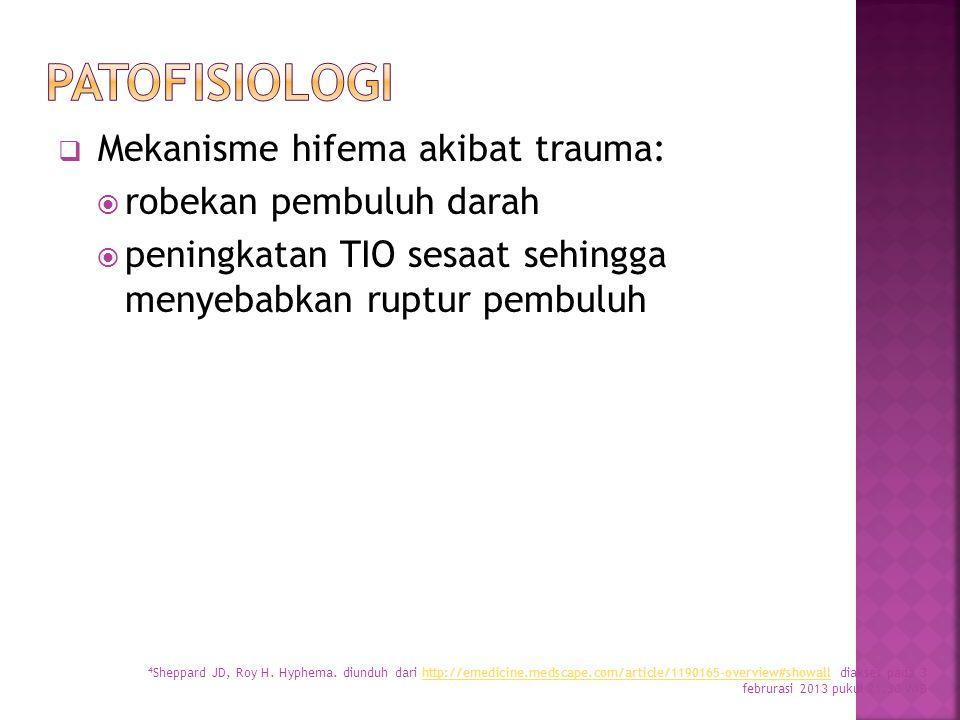 Patofisiologi Mekanisme hifema akibat trauma: robekan pembuluh darah