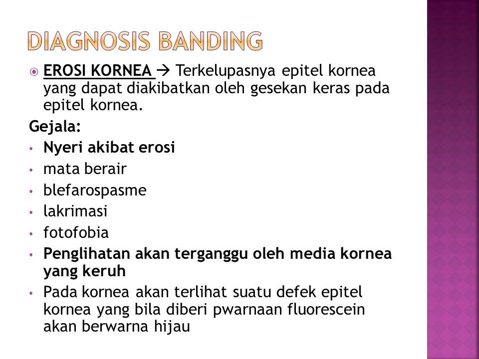 Diagnosis banding EROSI KORNEA  Terkelupasnya epitel kornea yang dapat diakibatkan oleh gesekan keras pada epitel kornea.