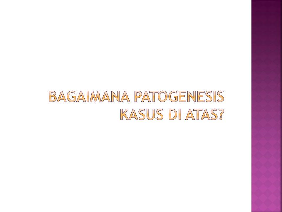 Bagaimana patogenesis kasus di atas