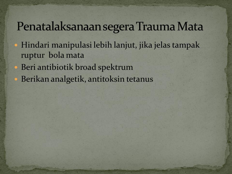 Penatalaksanaan segera Trauma Mata