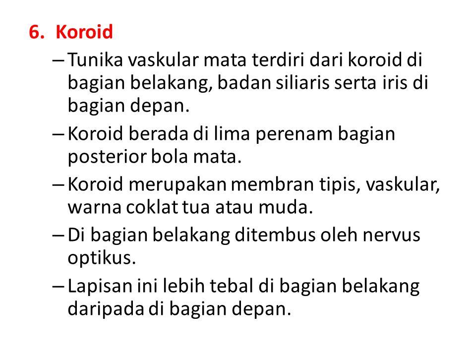 Koroid Tunika vaskular mata terdiri dari koroid di bagian belakang, badan siliaris serta iris di bagian depan.