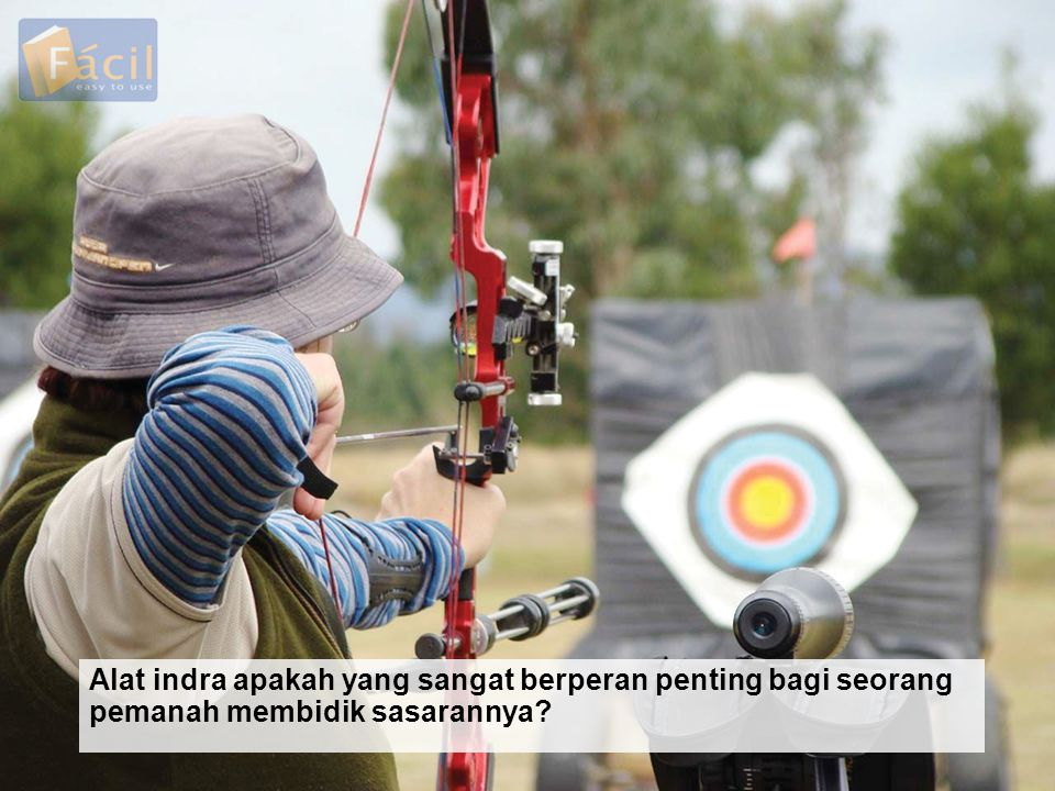 Alat indra apakah yang sangat berperan penting bagi seorang pemanah membidik sasarannya