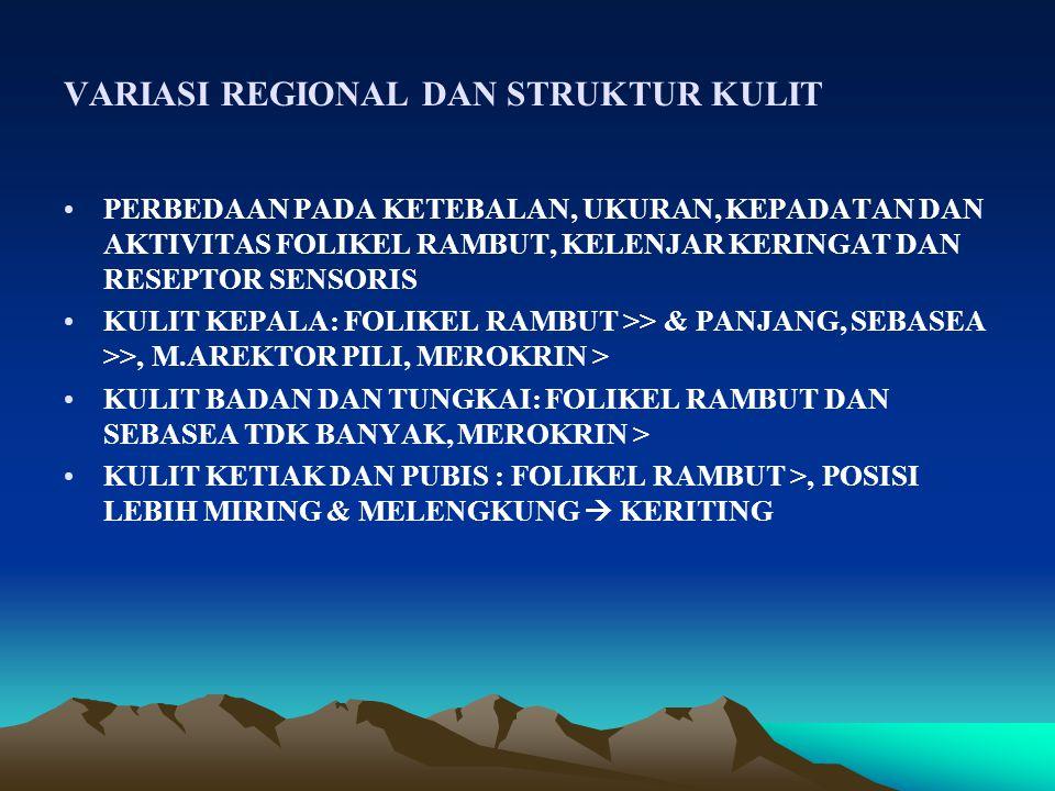 VARIASI REGIONAL DAN STRUKTUR KULIT