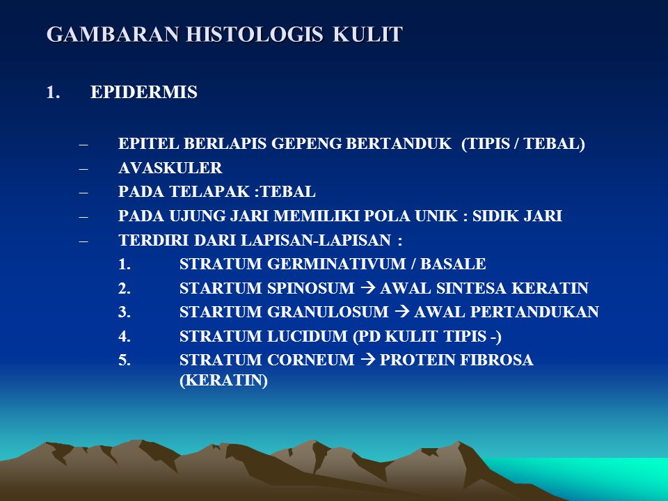 GAMBARAN HISTOLOGIS KULIT