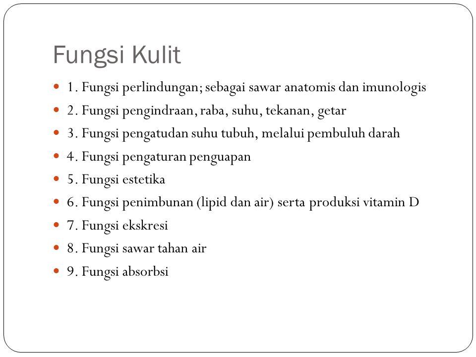 Fungsi Kulit 1. Fungsi perlindungan; sebagai sawar anatomis dan imunologis. 2. Fungsi pengindraan, raba, suhu, tekanan, getar.
