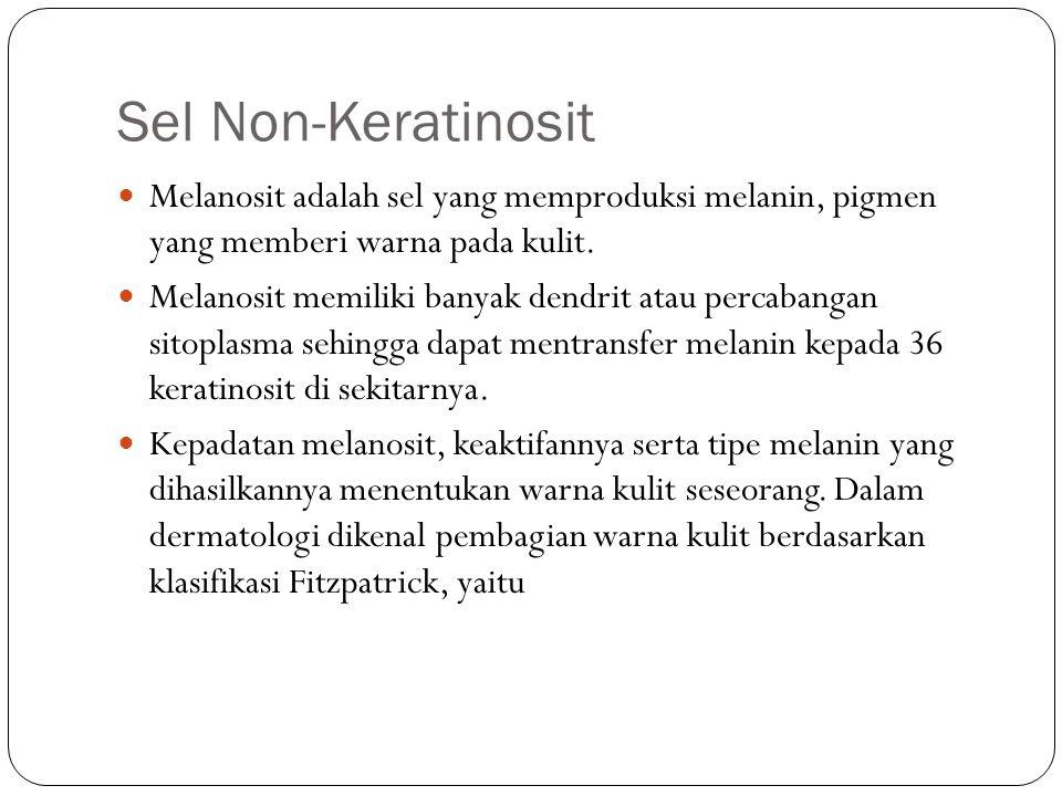 Sel Non-Keratinosit Melanosit adalah sel yang memproduksi melanin, pigmen yang memberi warna pada kulit.