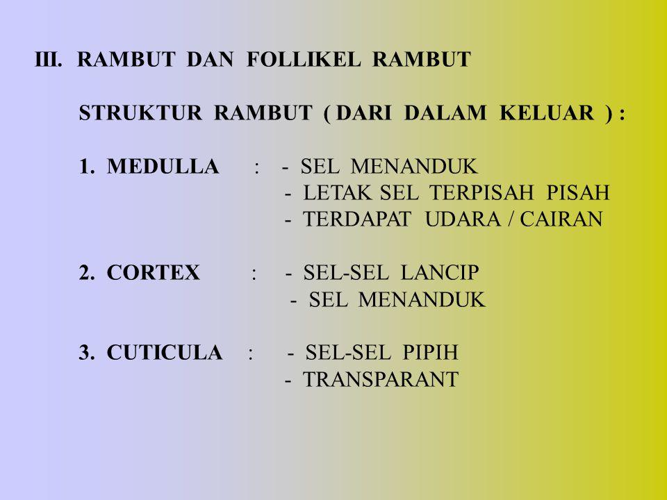 III. RAMBUT DAN FOLLIKEL RAMBUT