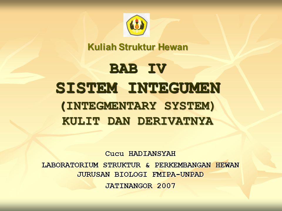 BAB IV SISTEM INTEGUMEN (INTEGMENTARY SYSTEM) KULIT DAN DERIVATNYA