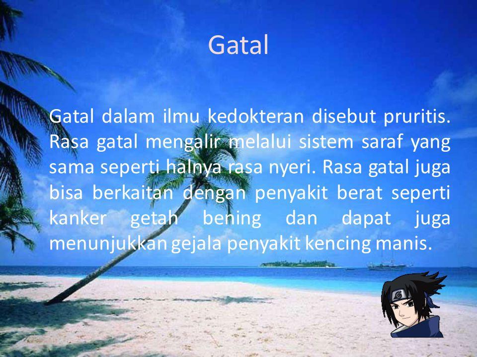 Gatal