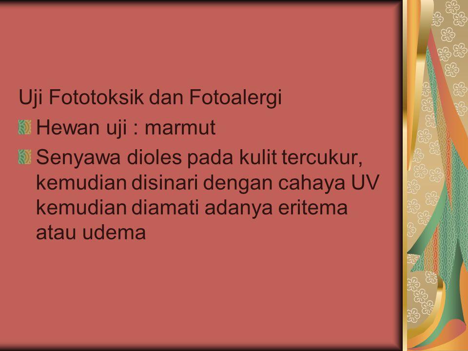 Uji Fototoksik dan Fotoalergi