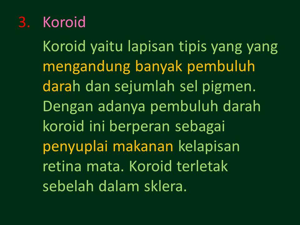 Koroid