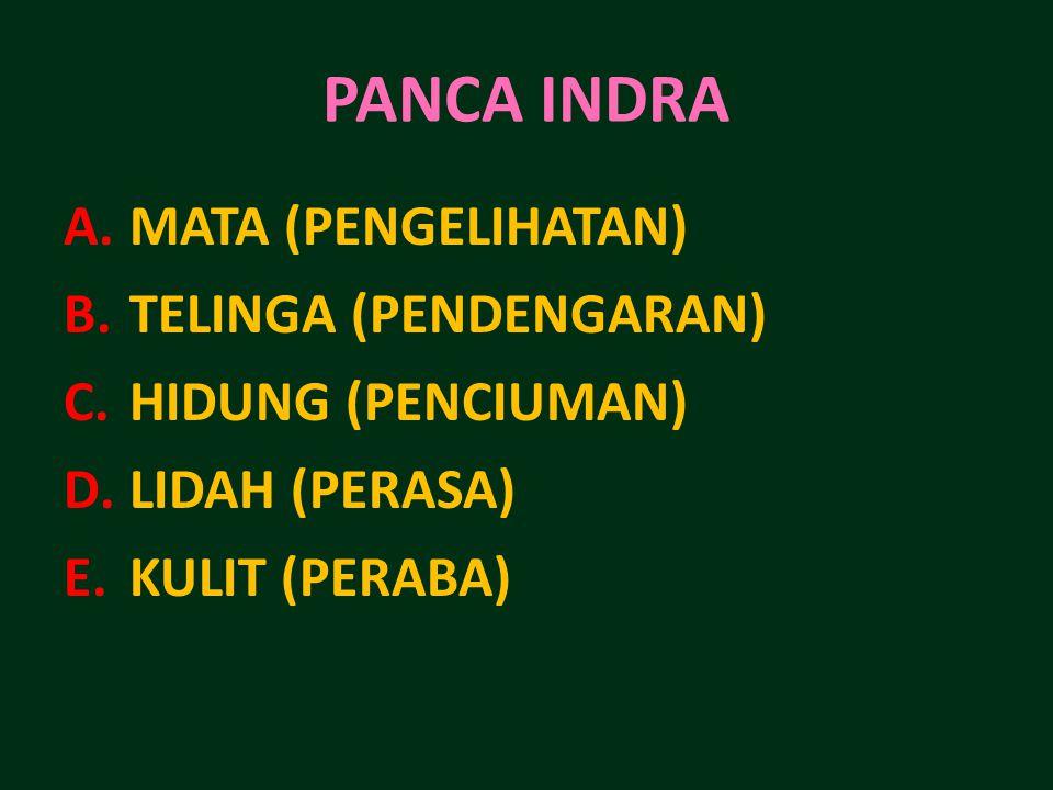PANCA INDRA MATA (PENGELIHATAN) TELINGA (PENDENGARAN)