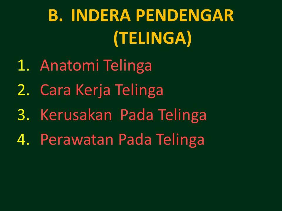 INDERA PENDENGAR (TELINGA)