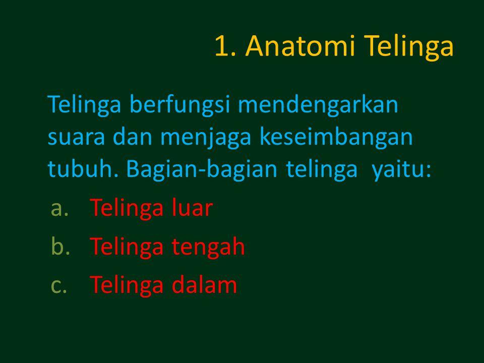 1. Anatomi Telinga Telinga berfungsi mendengarkan suara dan menjaga keseimbangan tubuh. Bagian-bagian telinga yaitu: