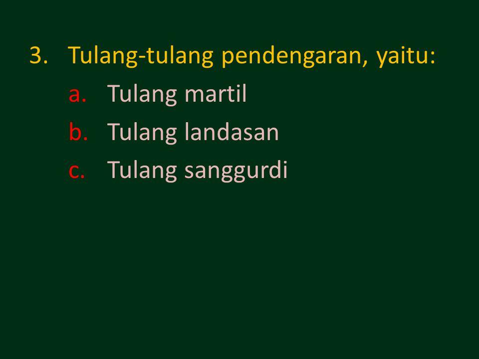 Tulang-tulang pendengaran, yaitu: