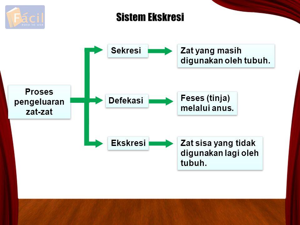 Sistem Ekskresi Sekresi Zat yang masih digunakan oleh tubuh.