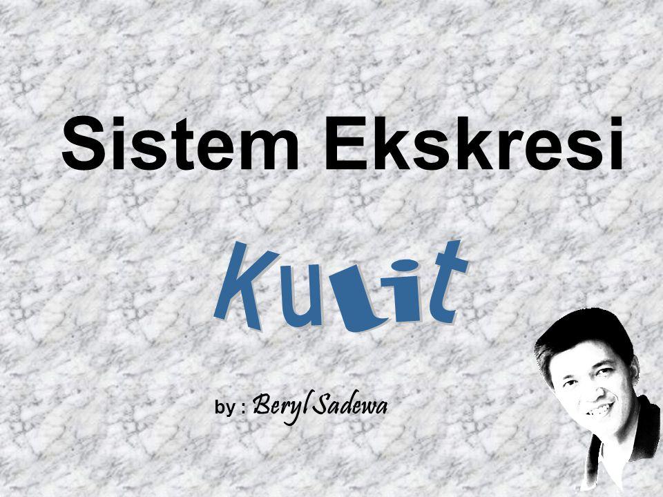 Sistem Ekskresi t K i u l by : Beryl Sadewa