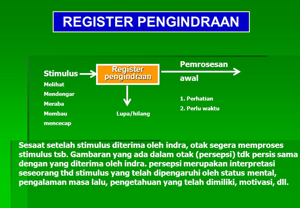 REGISTER PENGINDRAAN Pemrosesan awal Register Stimulus pengindraan