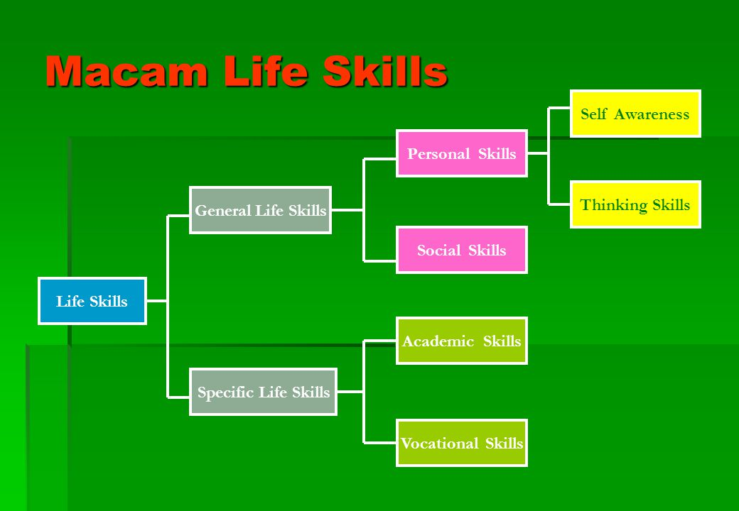 Macam Life Skills Self Awareness Personal Skills Thinking Skills