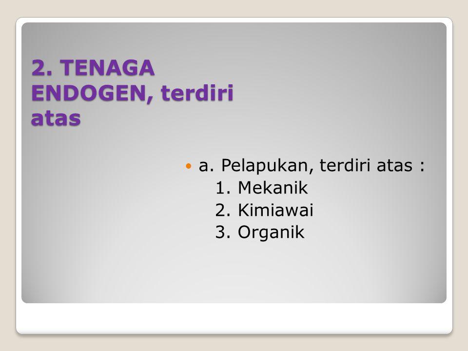 2. TENAGA ENDOGEN, terdiri atas