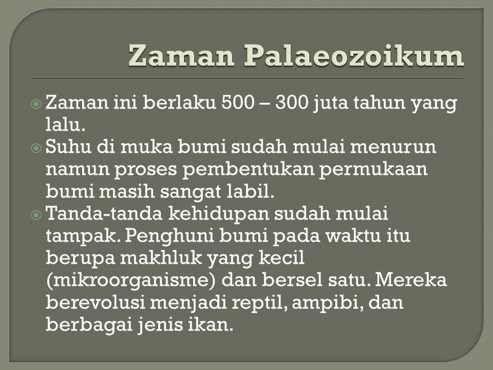 Zaman Palaeozoikum Zaman ini berlaku 500 – 300 juta tahun yang lalu.