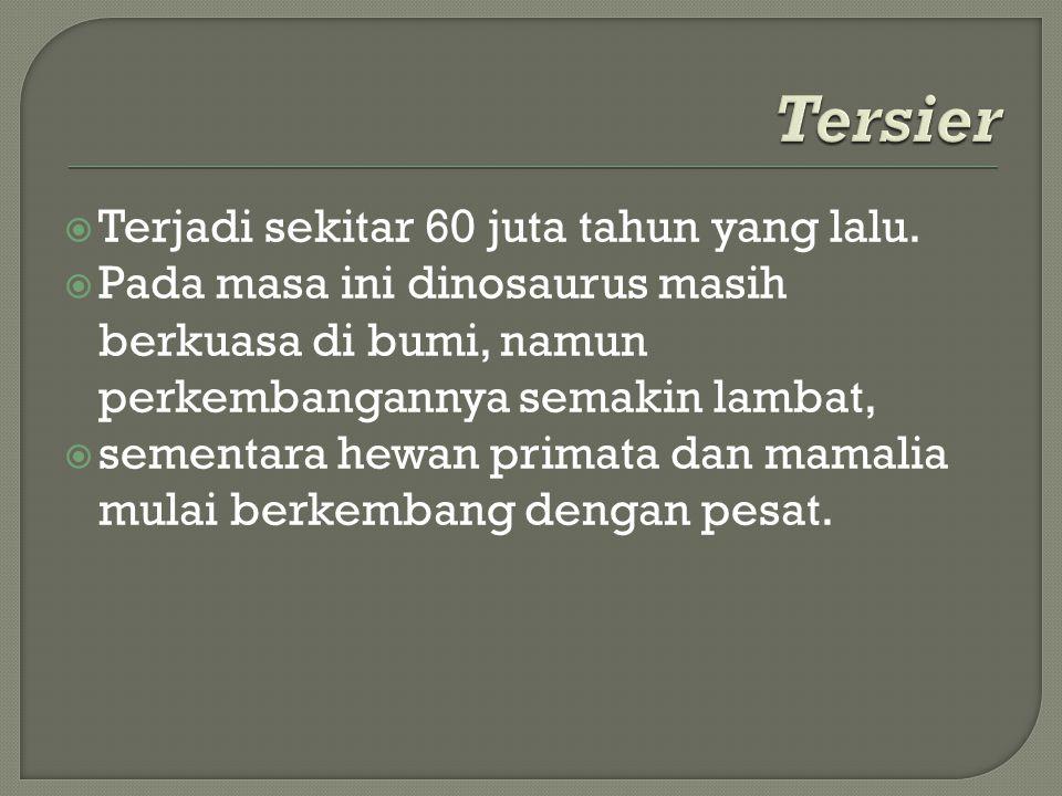 Tersier Terjadi sekitar 60 juta tahun yang lalu.