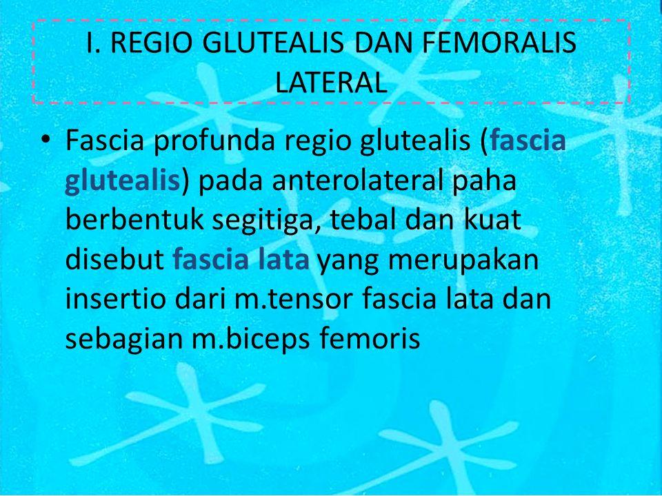 I. REGIO GLUTEALIS DAN FEMORALIS LATERAL