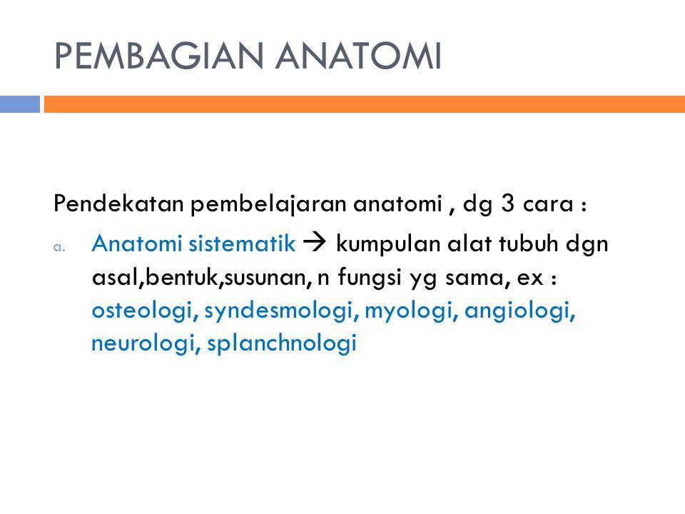 PEMBAGIAN ANATOMI Pendekatan pembelajaran anatomi , dg 3 cara :