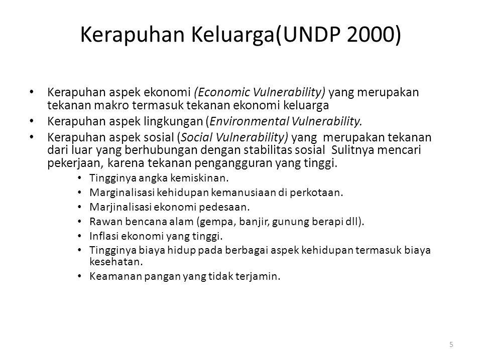 Kerapuhan Keluarga(UNDP 2000)