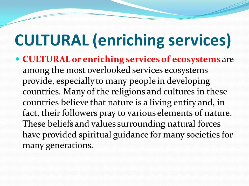 CULTURAL (enriching services)