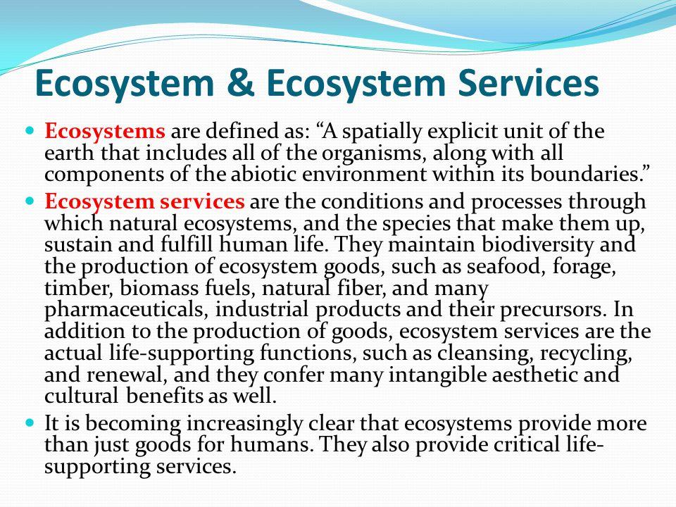 Ecosystem & Ecosystem Services