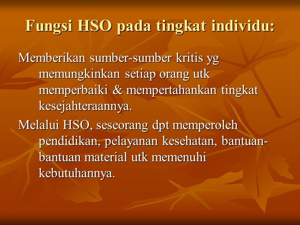 Fungsi HSO pada tingkat individu:
