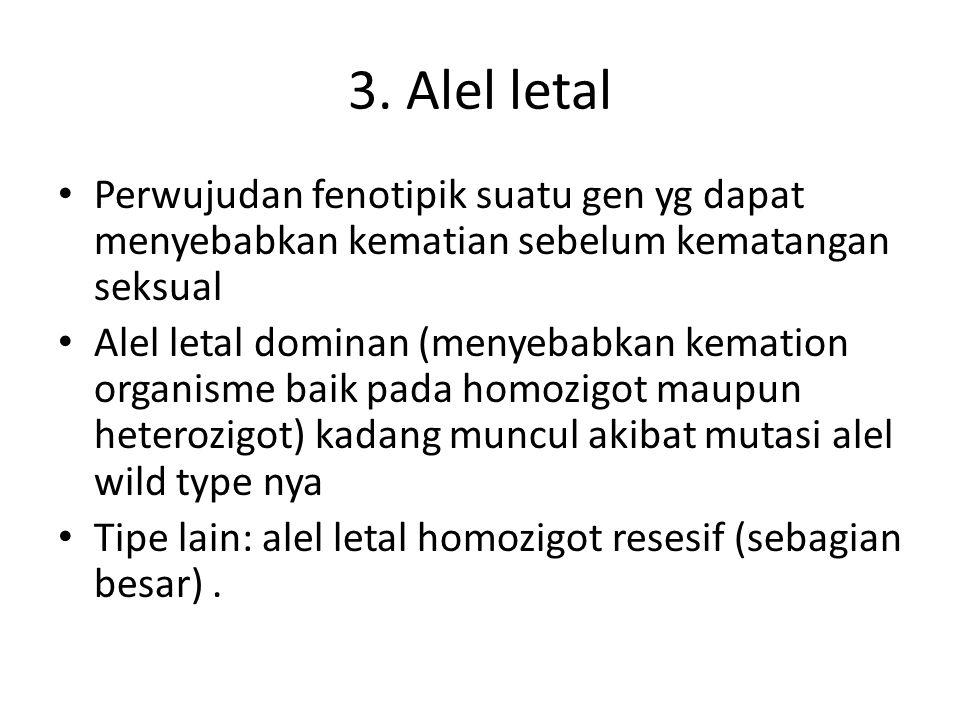 3. Alel letal Perwujudan fenotipik suatu gen yg dapat menyebabkan kematian sebelum kematangan seksual.