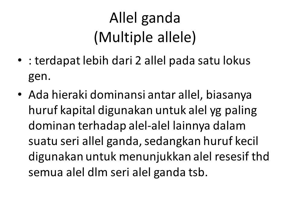 Allel ganda (Multiple allele)