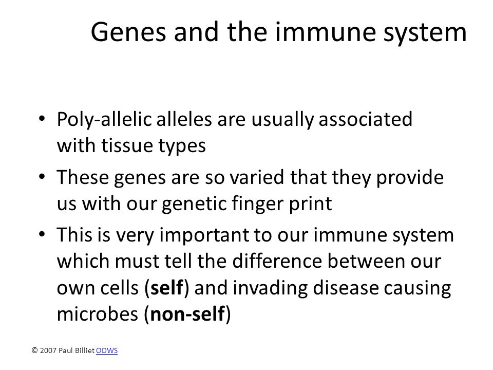 Genes and the immune system