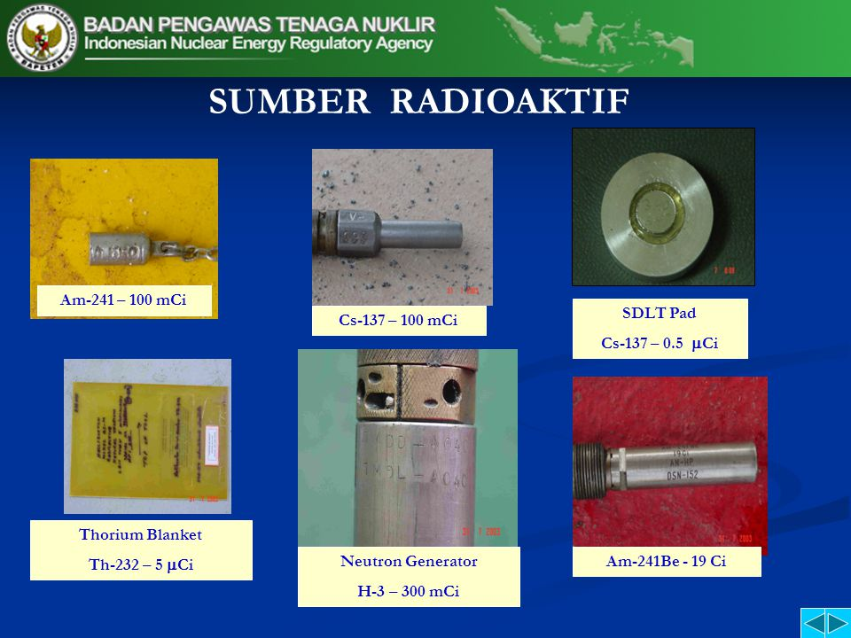 SUMBER RADIOAKTIF Am-241 – 100 mCi SDLT Pad Cs-137 – 0.5 Ci