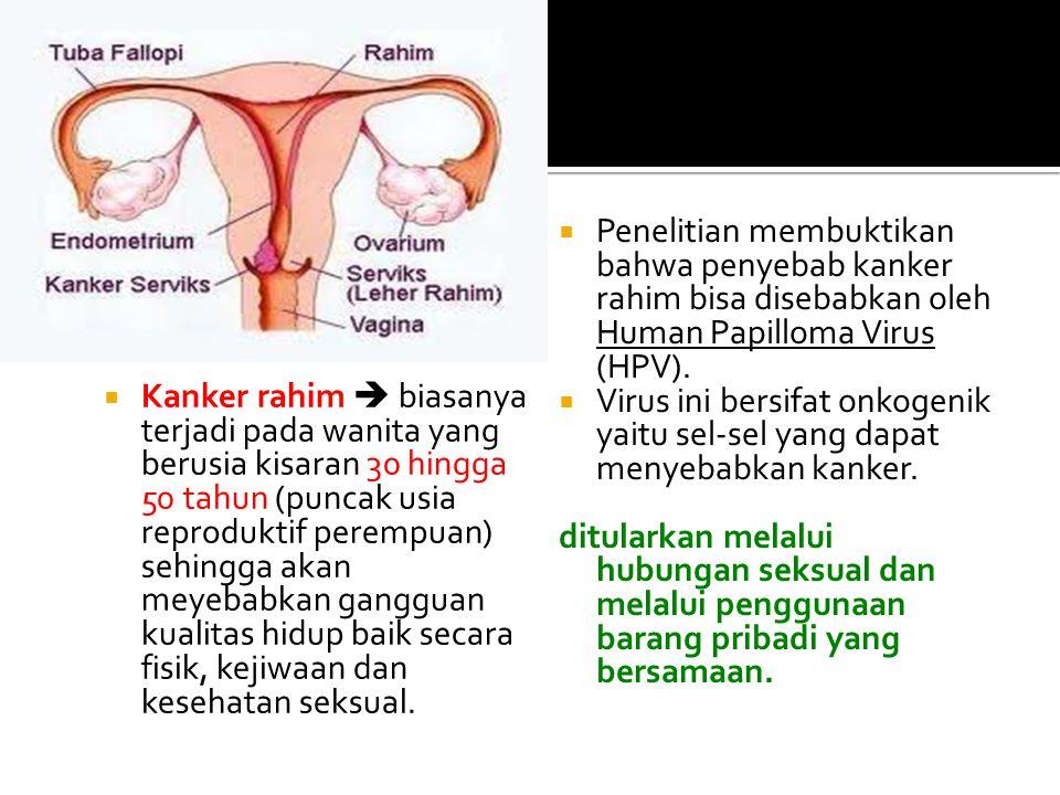 Penelitian membuktikan bahwa penyebab kanker rahim bisa disebabkan oleh Human Papilloma Virus (HPV).