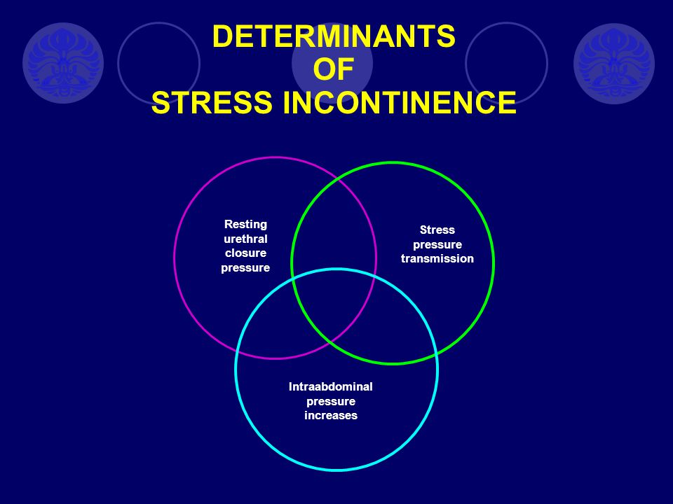 DETERMINANTS OF STRESS INCONTINENCE
