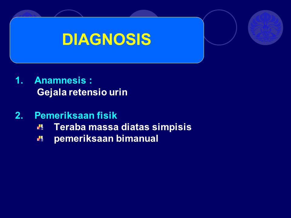 DIAGNOSIS Anamnesis : Gejala retensio urin Pemeriksaan fisik