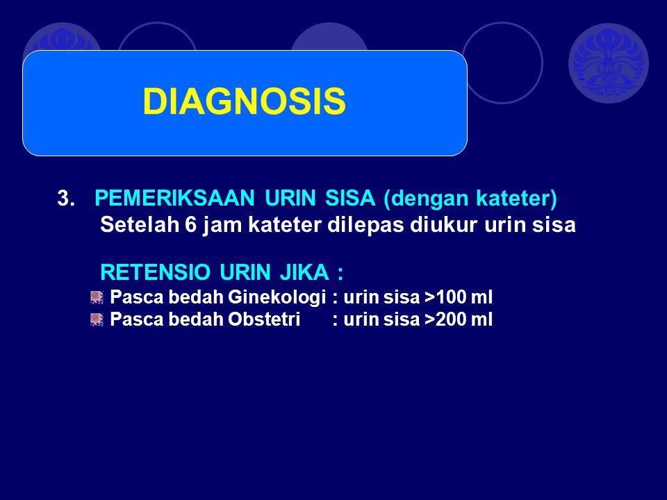 DIAGNOSIS PEMERIKSAAN URIN SISA (dengan kateter)