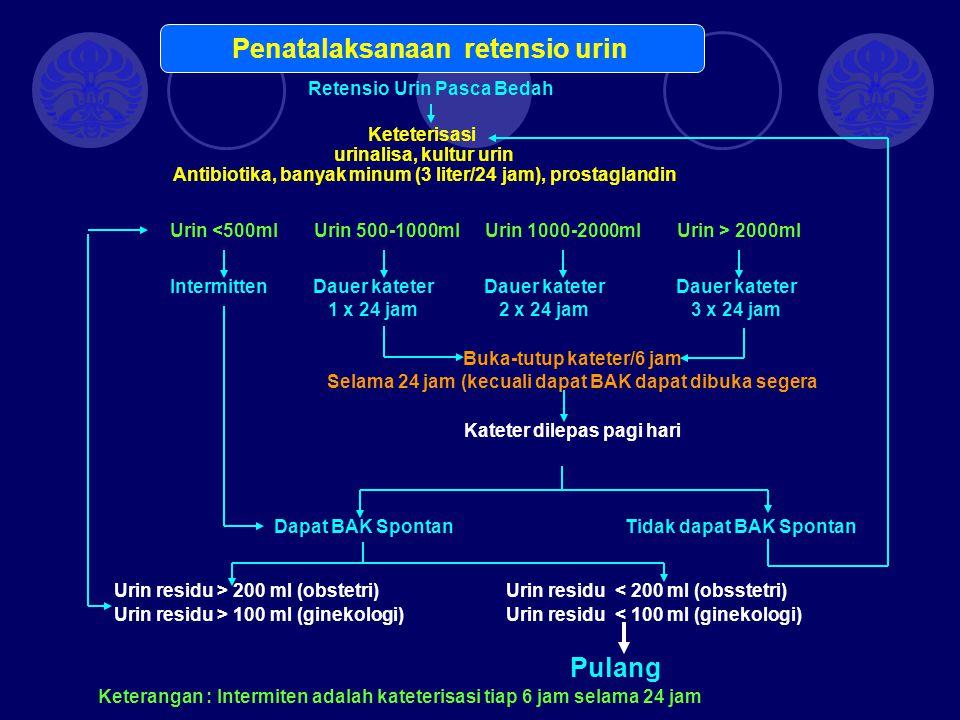 Penatalaksanaan retensio urin