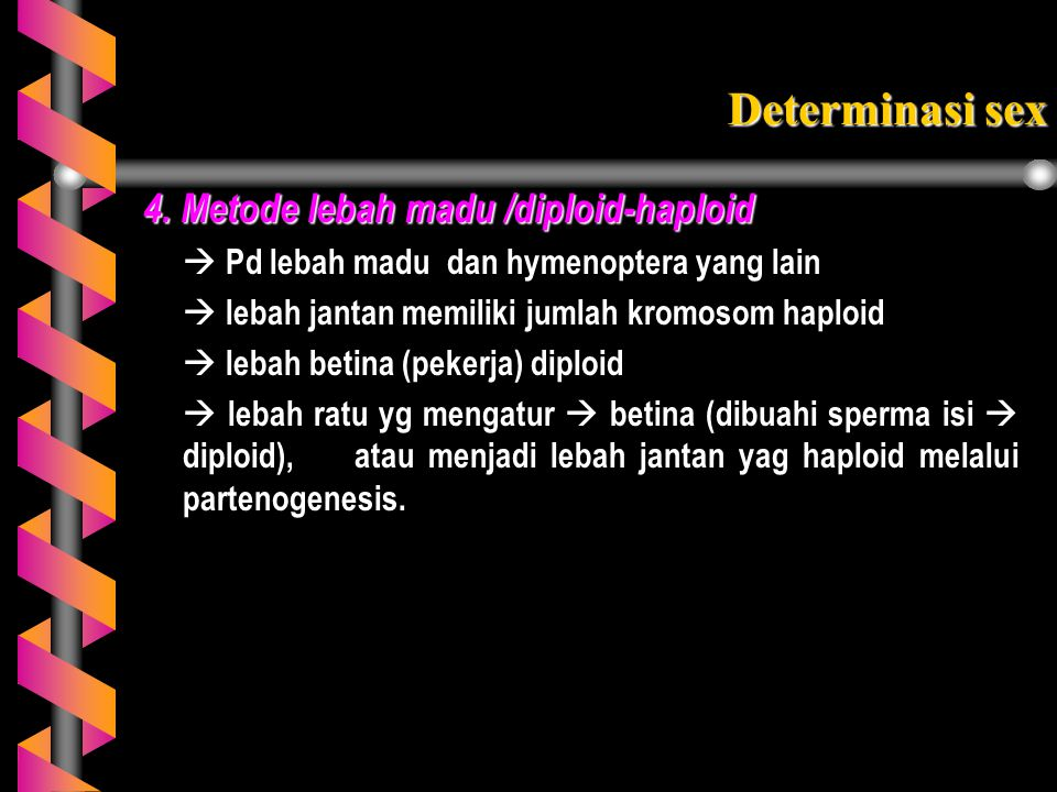 Determinasi sex 4. Metode lebah madu /diploid-haploid