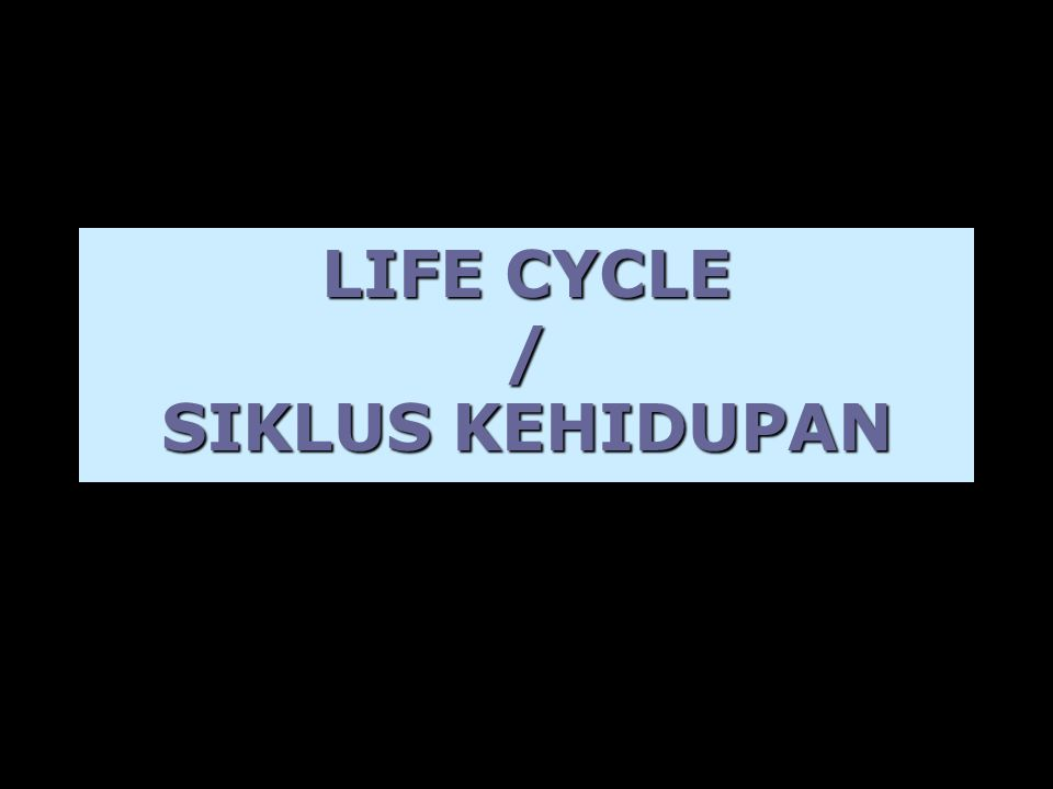 LIFE CYCLE / SIKLUS KEHIDUPAN