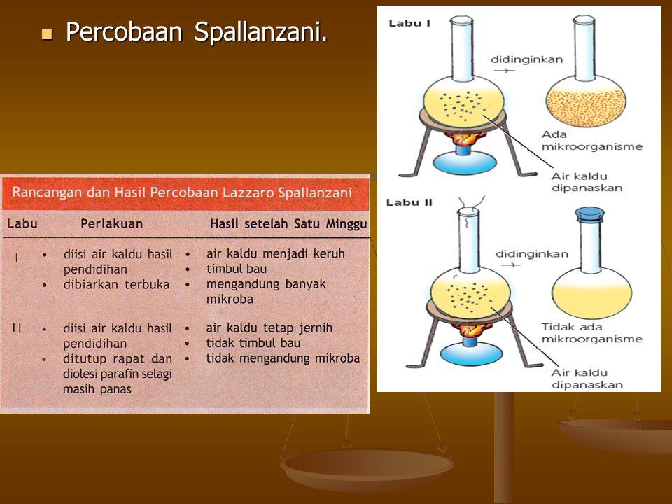 Percobaan Spallanzani.