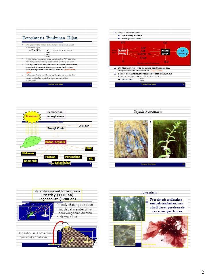 Pengantar Ilmu Pertanian Pengantar Ilmu Pertanian