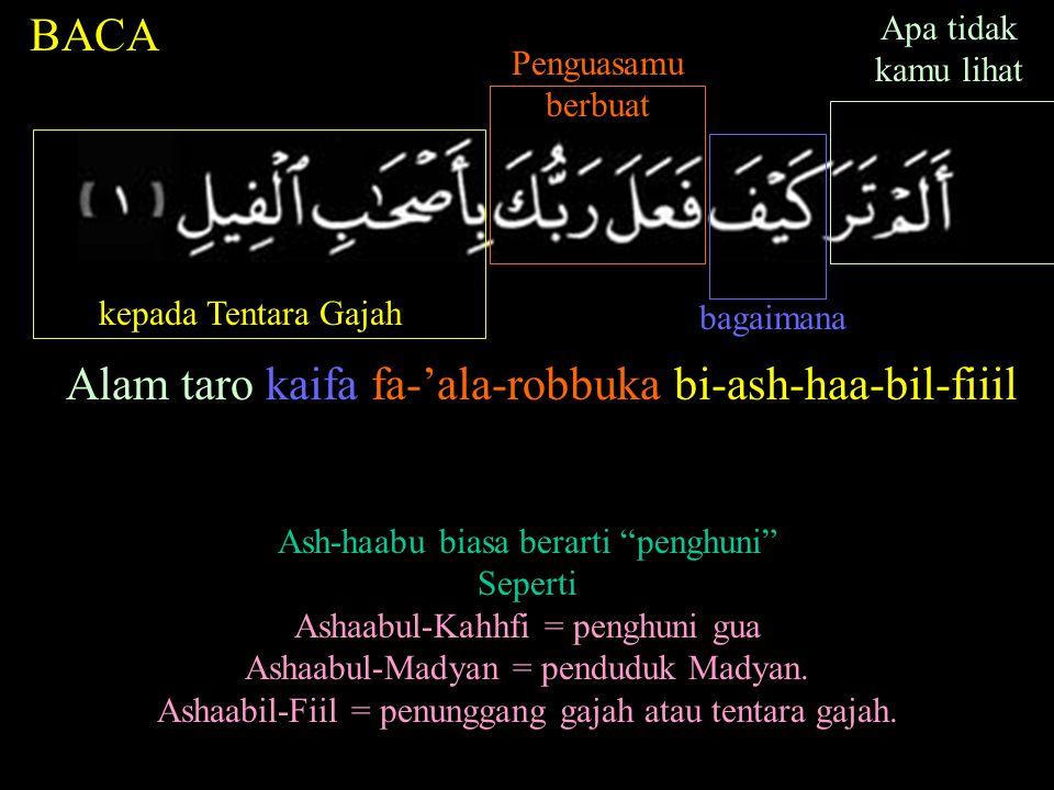 Alam taro kaifa fa-'ala-robbuka bi-ash-haa-bil-fiiil